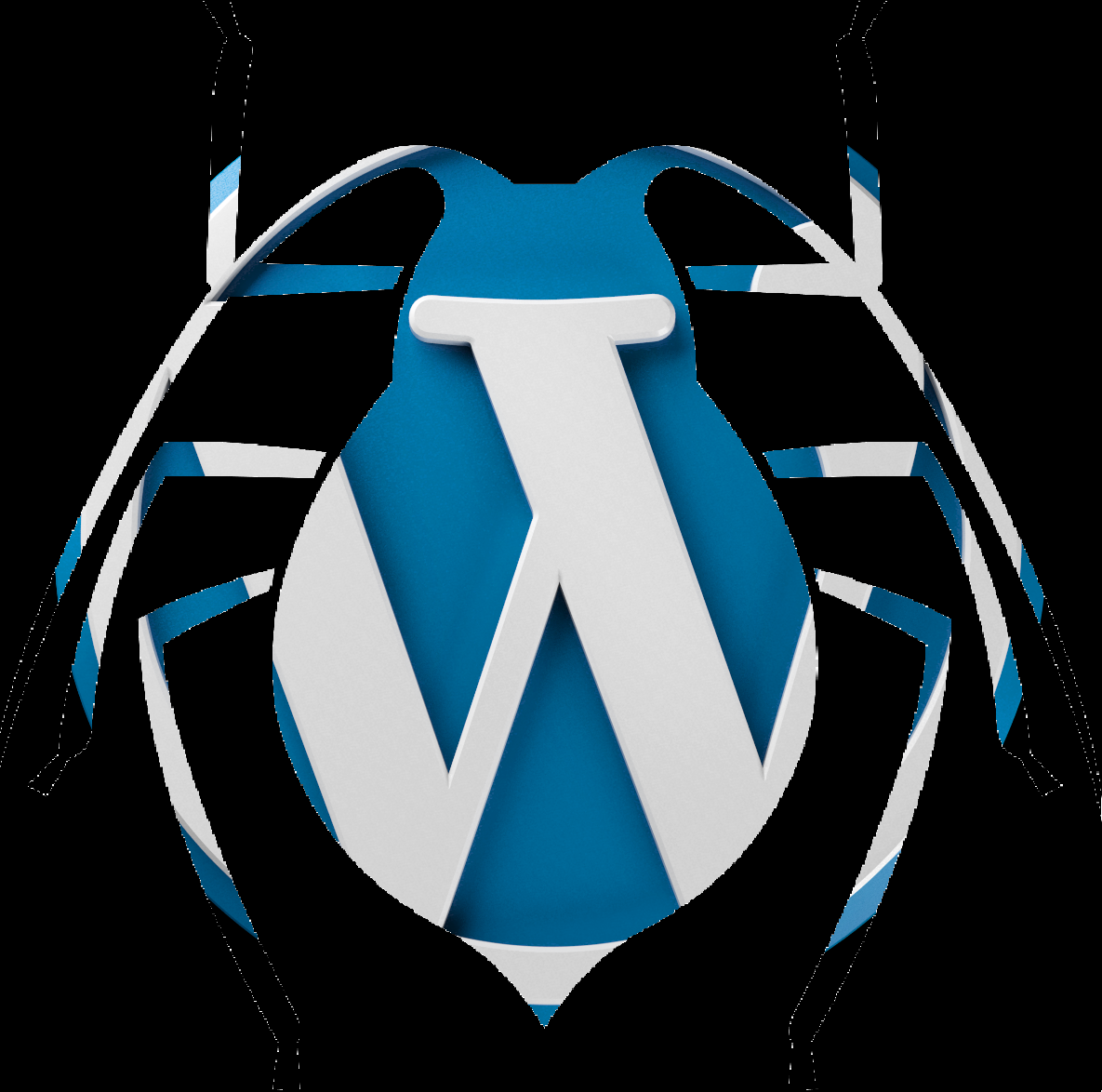 WordPress Developer Debug.