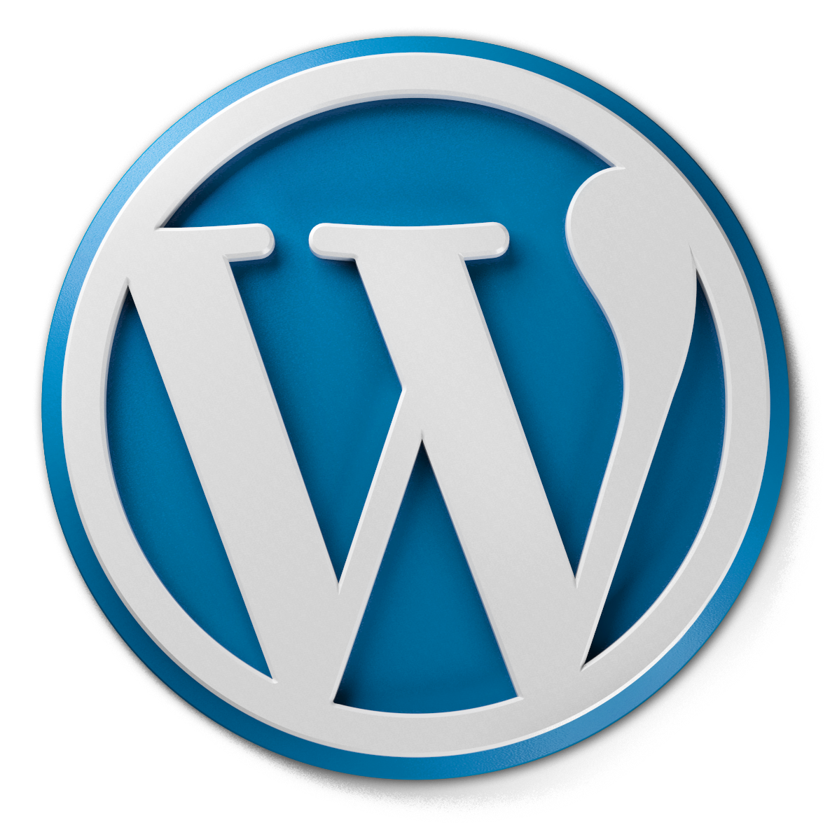 Wordpress, Custom Logo